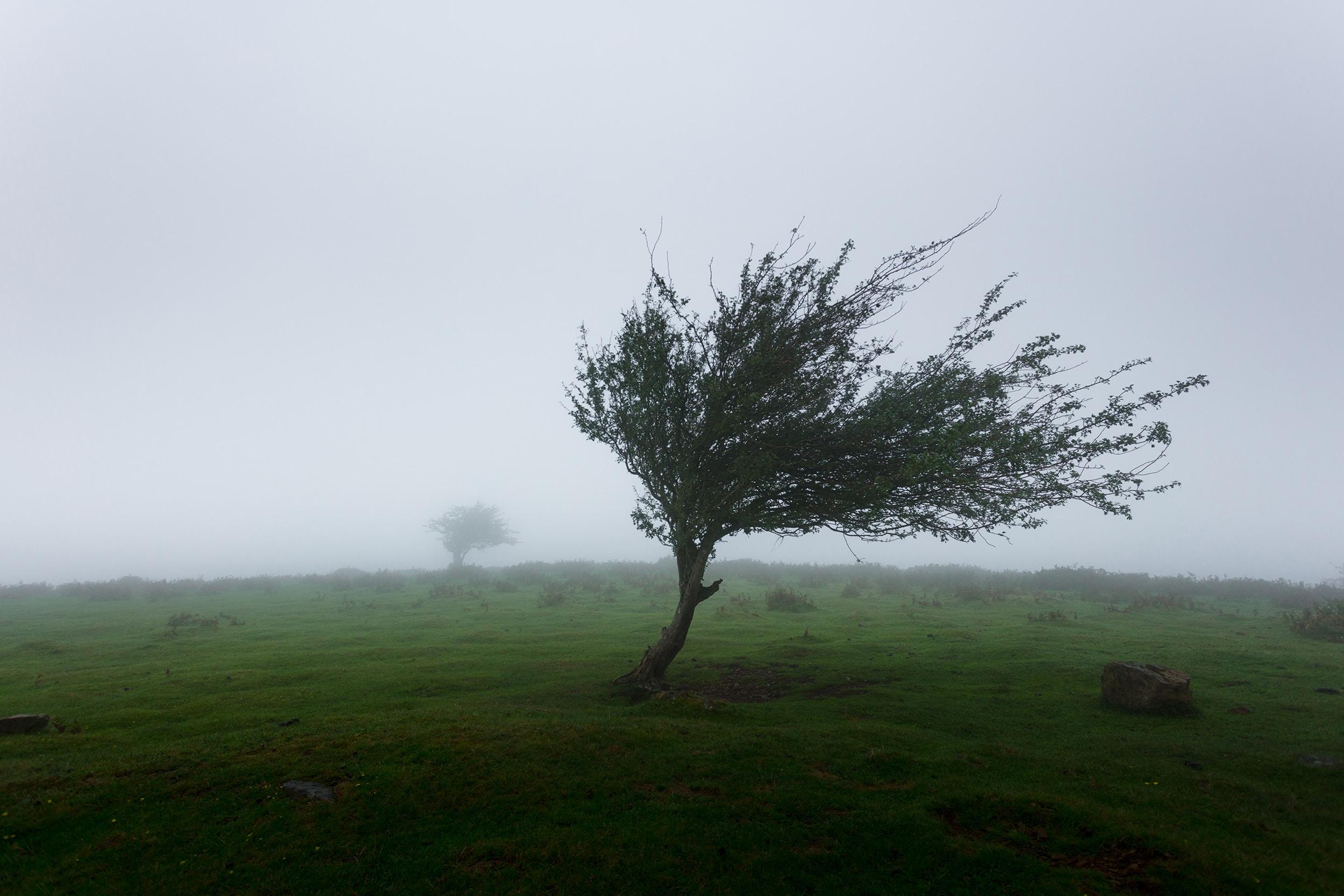 Dégâts tempête assurances Chimay